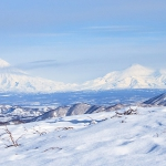 pasha-vereshhaka-na-fone-domashnix-vulkanov