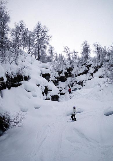 Voss (Myrkdalen) freeride