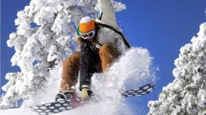 Разновидности сноубордов