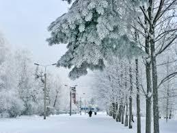 Туристические компании, предлагающие поездки на горнолыжные курорты, предлагают посетить Ижевск
