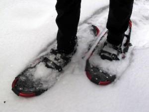 Преимущества и свойства снегоступов