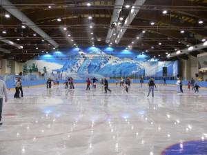 О спорте  на льду