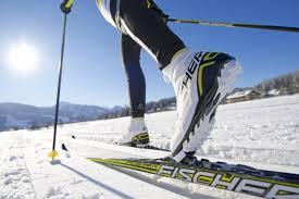 Выбор спортивных лыж